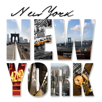 Buy NYC Domain Names - NicheQuest