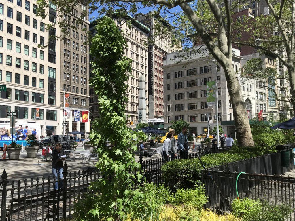 madison-square-park-nyc