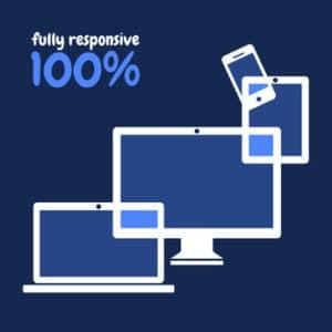 100% fully responsive website design